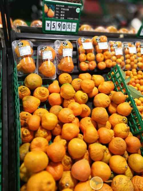 假冒丑橘图片1