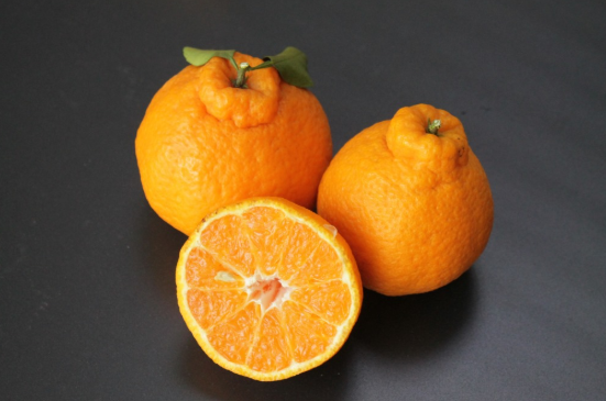 丑橘高清图