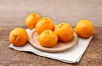 春见耙耙柑,柑橘中的贵族