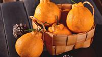 """怎么分辨真假""""丑橘""""?"""